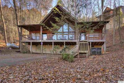 Sevierville Single Family Home For Sale: 1640 Eagles Reach Way