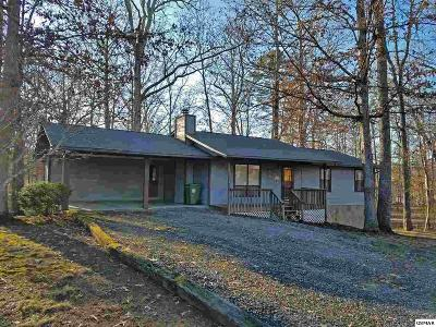 Sevierville Single Family Home For Sale: 2440 Amanda Ln