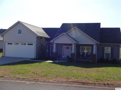Sevierville Single Family Home For Sale: 2642 Vista Meadows Ln