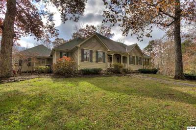 Blount County Single Family Home For Sale: 3458 Allegheny Loop Rd