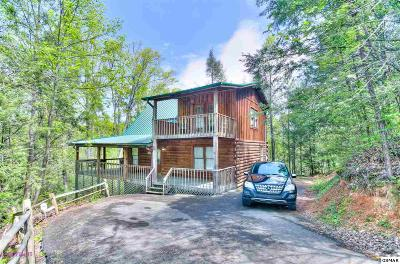Sevierville Single Family Home For Sale: 733 Ski View Ln