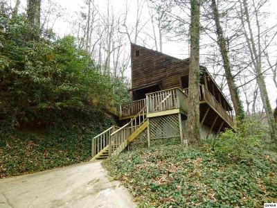 Gatlinburg TN Single Family Home For Sale: $282,000