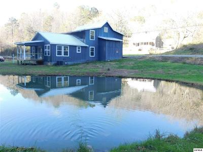 Sevierville Single Family Home For Sale: 3778 Henry Town Rd