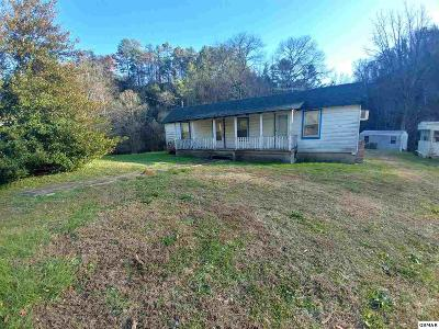 Sevierville Single Family Home For Sale: 1522 Upper Middle Creek Rd
