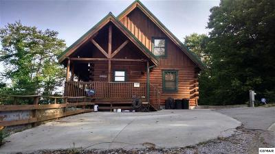 Bean Station Single Family Home For Sale: 153 Long's Gap Way