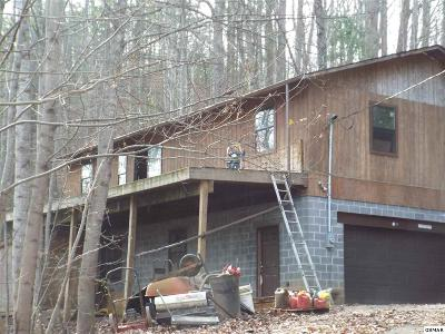 Sevierville TN Single Family Home For Sale: $74,900