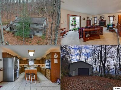 Sevier County, Jefferson County, Cocke County, Blount County, Knox County Single Family Home For Sale: 6713 Adrian Road