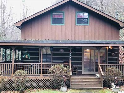 Gatlinburg TN Single Family Home For Sale: $185,000