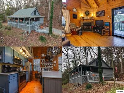 Sevierville TN Single Family Home For Sale: $200,000