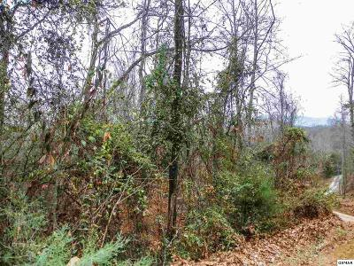 Sevier County Residential Lots & Land For Sale: George Harrison Way