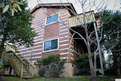 Gatlinburg TN Single Family Home For Sale: $365,000