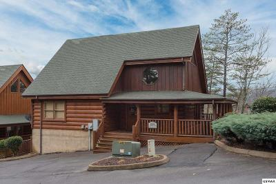 Sevierville Single Family Home For Sale: 2032 Cougar Crossing