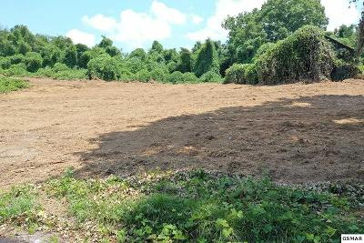 Sevier County Residential Lots & Land For Sale: 1473 & 1483 Catlettsburg Road