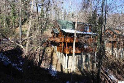 Gatlinburg TN Single Family Home For Sale: $370,000