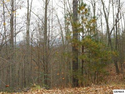 Sevier County Residential Lots & Land For Sale: Lot 14-E Stackstone Rd