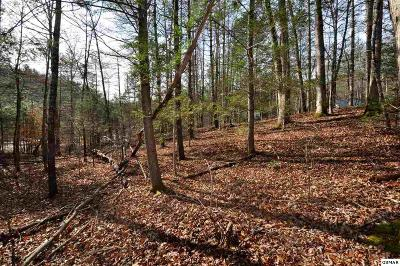 Residential Lots & Land For Sale: 426 Kinzel Springs Way