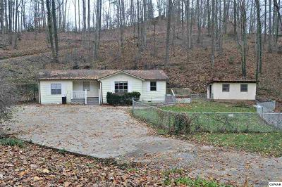 Gatlinburg TN Single Family Home For Sale: $164,900