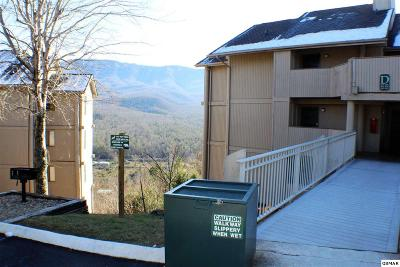 Sevier County Condo/Townhouse For Sale: 3710 Weber Rd