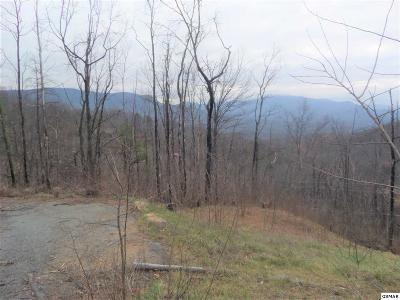 Sevier County Residential Lots & Land For Sale: 1216 Pine Top Ln