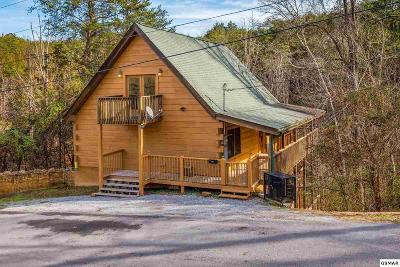 Sevierville Single Family Home For Sale: 910 Willard Way