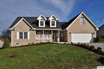 Sevierville Single Family Home For Sale: 2545 Covington Circle