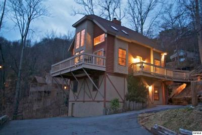Gatlinburg Single Family Home For Sale: 1433 Arbon Dr