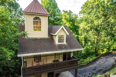 Gatlinburg Single Family Home For Sale: 1429 Arbon Dr