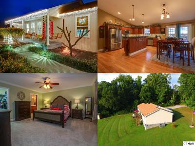 Single Family Home For Sale: 3069 Piney Level Road