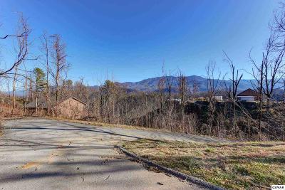 Residential Lots & Land For Sale: 777 Village Loop Road