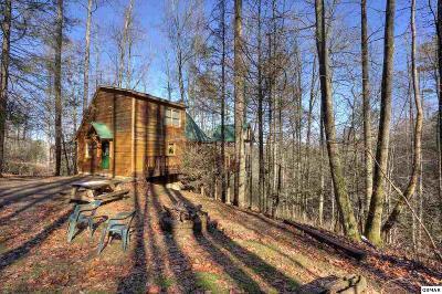 Sevierville Single Family Home For Sale: 2879 Joyner Hills Lane