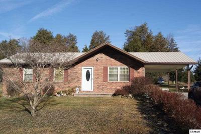 Single Family Home For Sale: 106 Richardson Lane