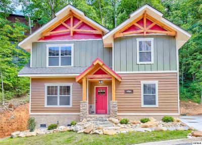 Gatlinburg Single Family Home For Sale: 1128 Anastasia Way