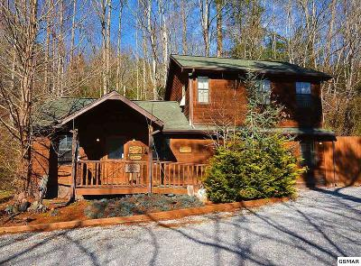 Gatlinburg Single Family Home For Sale: 2159 E Parkway
