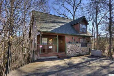 Pigeon Forge Single Family Home For Sale: 2813 Forrest Way