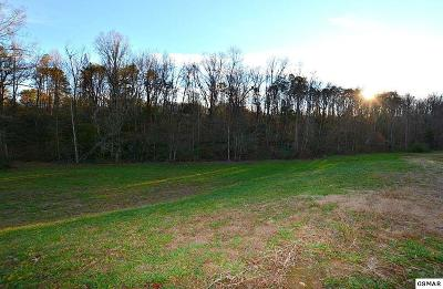 Sevierville TN Residential Lots & Land For Sale: $75,000
