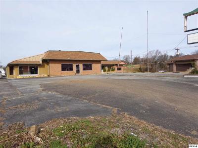 Cocke County Commercial For Sale: 761 Cosby Hwy