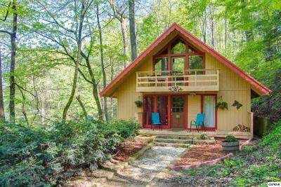 Gatlinburg Single Family Home For Sale: 907 Ski Mountain Rd