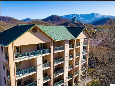 Gatlinburg Condo/Townhouse For Sale: 110 Bon Air Dr