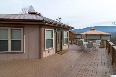 Gatlinburg Single Family Home For Sale: 717 Valley View Ln