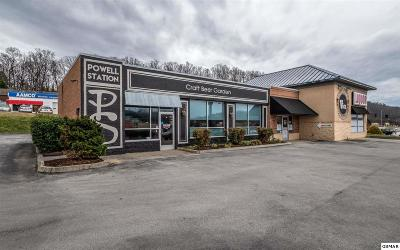 Knoxville Commercial For Sale: 102 Stekoia Ln