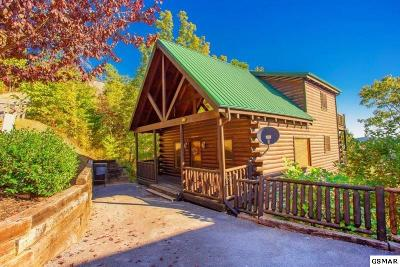Sevier County Single Family Home For Sale: 2251 Upper Middle Creek Rd