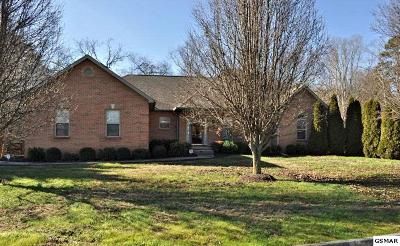 Seymour Single Family Home For Sale: 406 Meadowlake Circle
