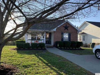 Sevier County Single Family Home For Sale: 1519 Mayberry Ln