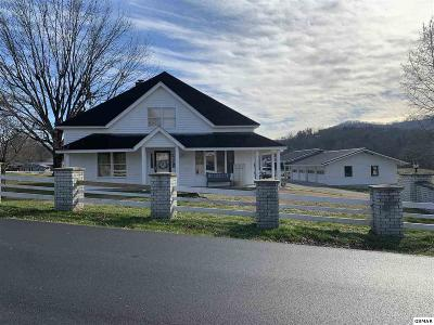 Pigeon Forge Commercial For Sale: 305 Pine Mountain Rd