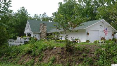 Pigeon Forge Single Family Home For Sale: 3360 Progress Hill Blvd