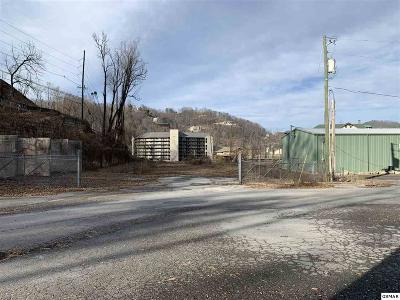 Gatlinburg Commercial For Sale: 309 Hughes Road