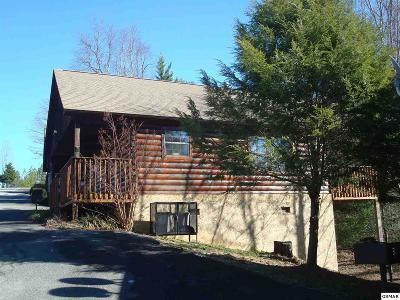 Sevierville Single Family Home For Sale: 1520 Bears Den Way