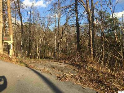Gatlinburg Residential Lots & Land For Sale: 1034 Old Cartertown Rd
