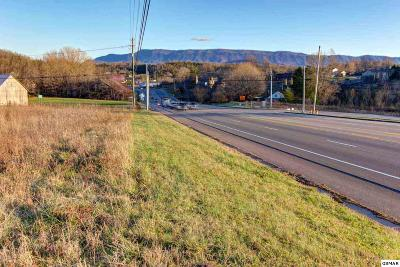 Sevier County Commercial For Sale: L6 Chapman Highway