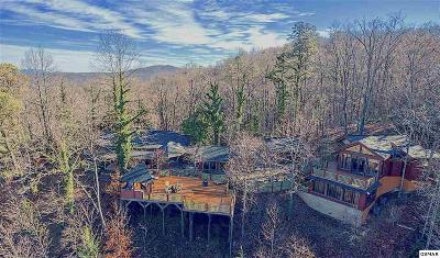 Gatlinburg Single Family Home For Sale: 646 Jefferson Rd